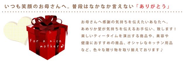 【あめりか堂】母の日特集 気持ちを込めた贈り物ならお任せ下さい!